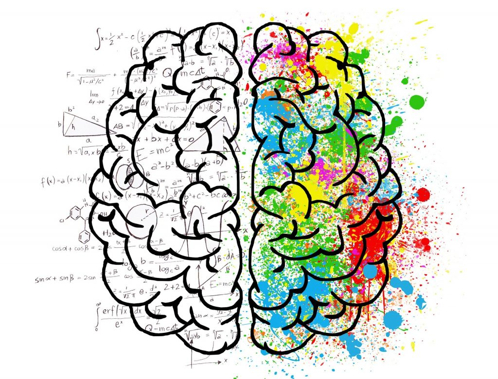 An image of a human brain with one half in black and white with a bunch of science and math symbols (representing the logic brain) and the other half painted in rainbow colours.