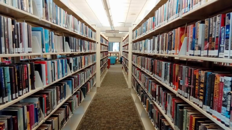 A row of library books stretching into the distance.